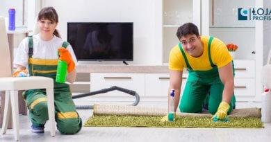 volte a prestar serviços de limpeza e higienização de estofados