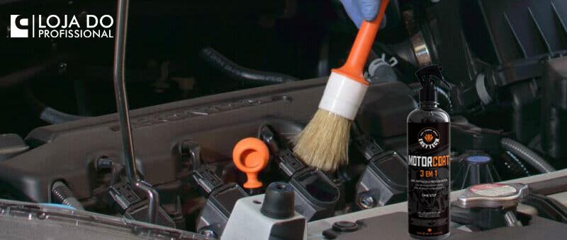 Como limpar o motor do carro!