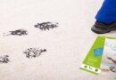 Solução doméstica para limpeza de tapetes e carpetes